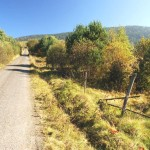 Holiday homes Rajsko cycling path 2